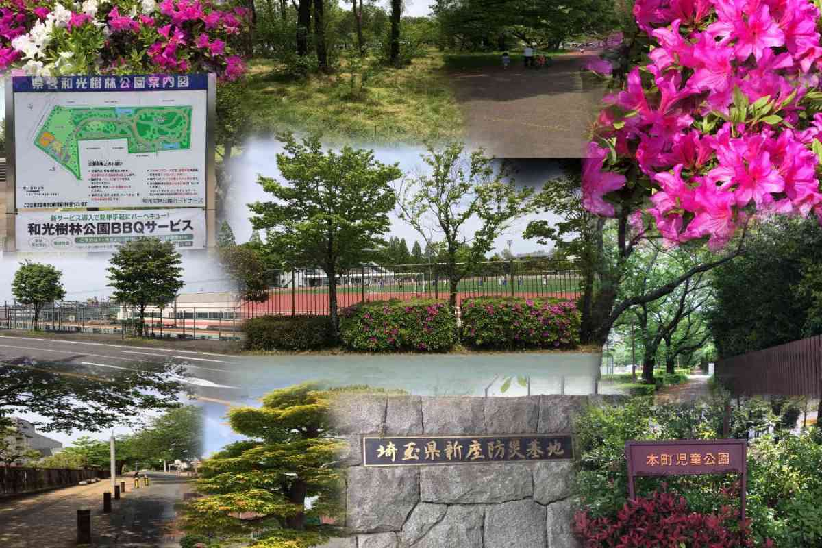 樹林 bbq 和光 公園