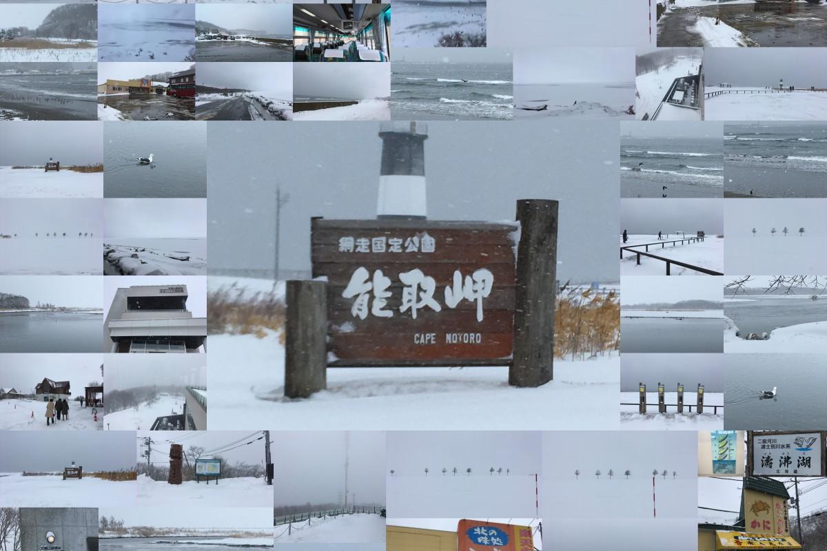 北海道ふっこう割 オホーツク海グルメ紀行 4日間 3月12日(3日目)