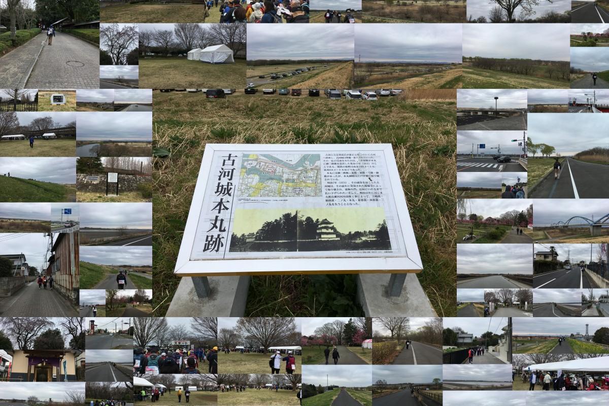 第20回記念 古河まくらがの里花桃ウオーク 1日目渡良瀬遊水地の自然を訪ねて 3月23日土曜日 たんぽぽコース
