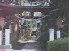 白   鬚   神   社