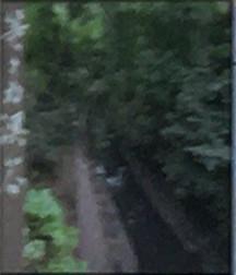 日本庭園にて配布しているパンフレットにも記載されています。