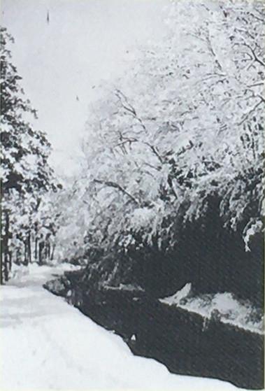 昭和10年代の等々力渓谷