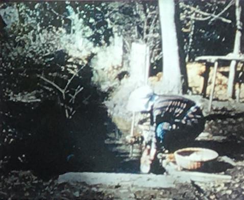 昭和28年(1953)頃の野火止用水