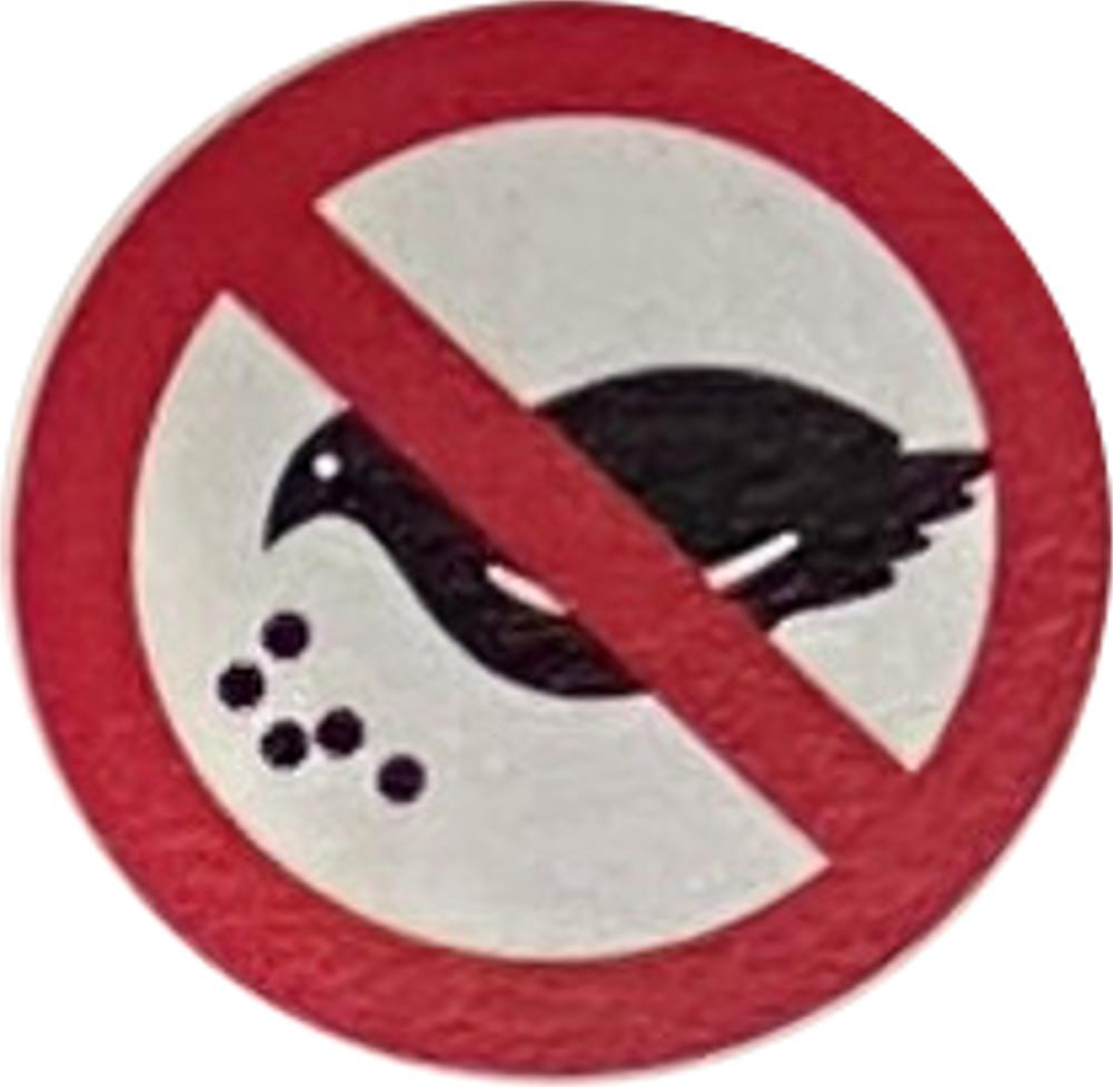 園内で野生の動物やハトにえさを与えることはやめましょう