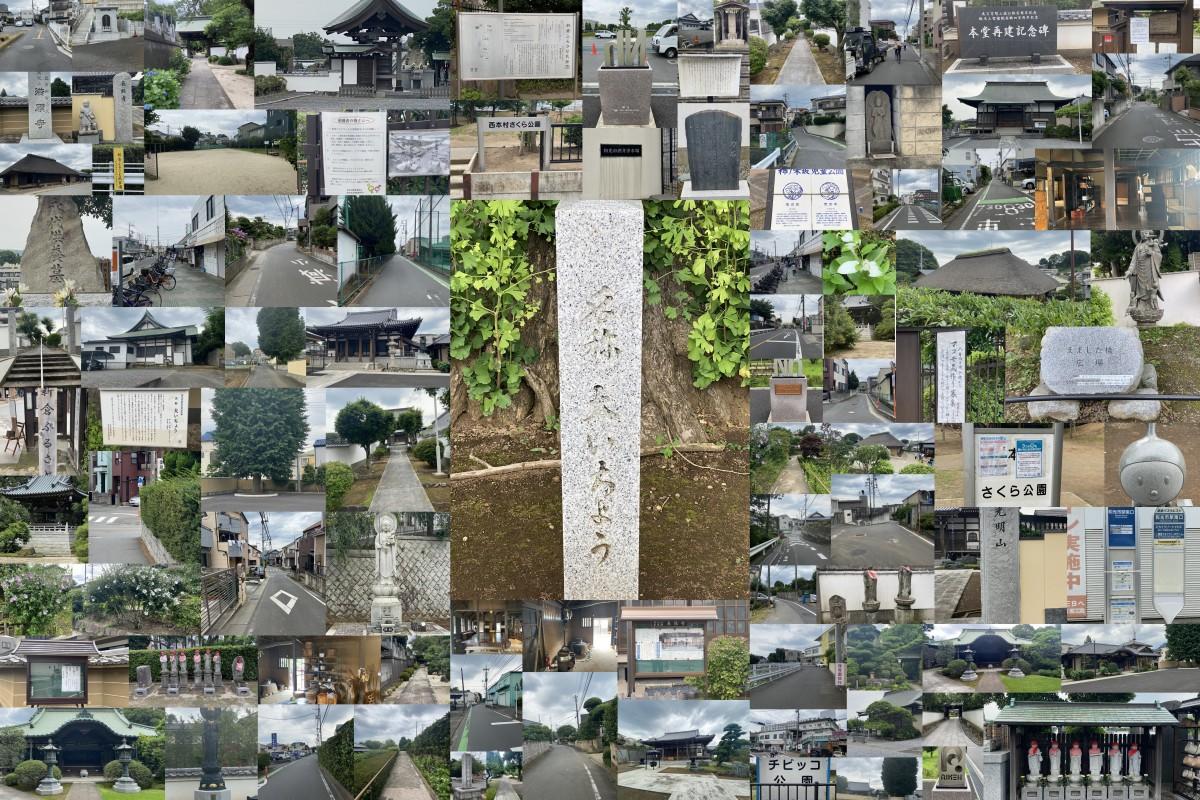 新倉・下新倉のお寺をめぐる カルチャーコース
