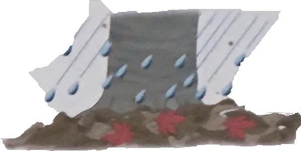 落ち葉が雨水を受けとめてくれるので、雨水は一気に流れず、土の中にしみこみます。
